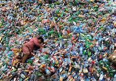Plastics Have Entered Human Food Chain, Study Shows…..